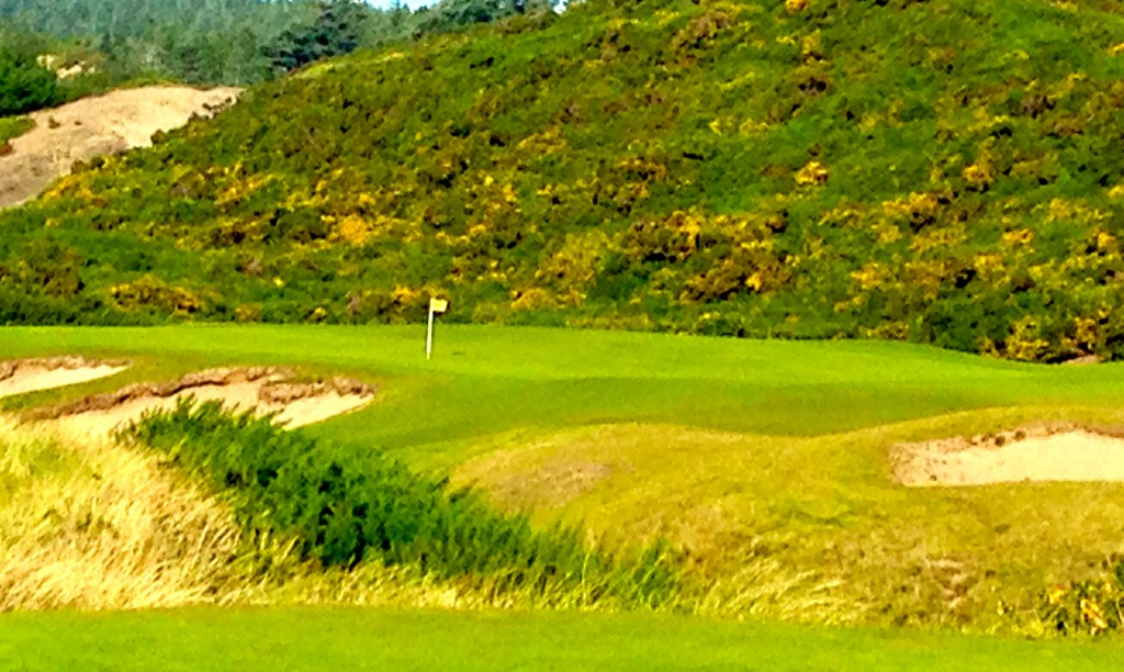 Flashes of yellow form a stunning backdrop on the No. 17 hole at Pacific Dunes.